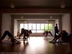 Ashtanga Yoga Memorial Day@Om Ashtanga Yoga Studio Athens-2