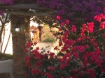 Om_Ashtanga_Yoga_Studio_Athens_Amorgos_2013_103