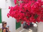 Om_Ashtanga_Yoga_Studio_Athens_Amorgos_2013_54