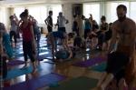 Om Studio Ashtanga Yoga Athens David Swenson 2015-201