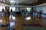 Om Studio Ashtanga Yoga Athens David Swenson 2015-275