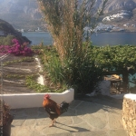 Om Studio| Ashtanga Yoga Athens, Amorgos Retreat 2016-14